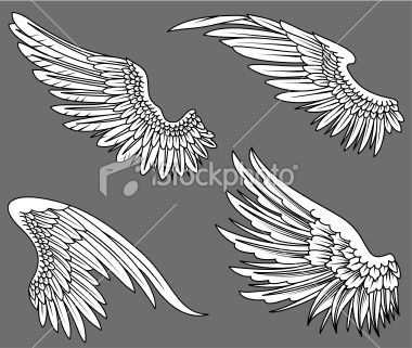how to draw angel wings from the side