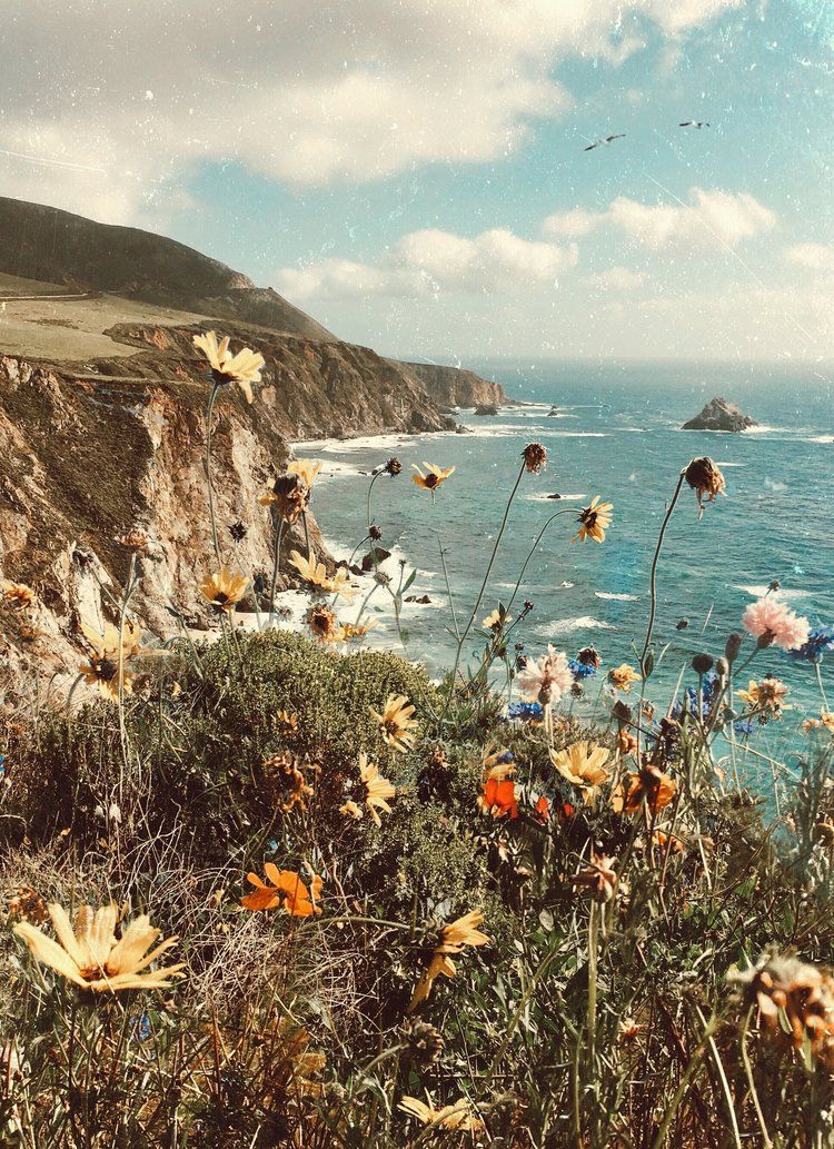 Bixby A Map Of Dreams Nature Aesthetic Nature Photography Aesthetic Wallpapers