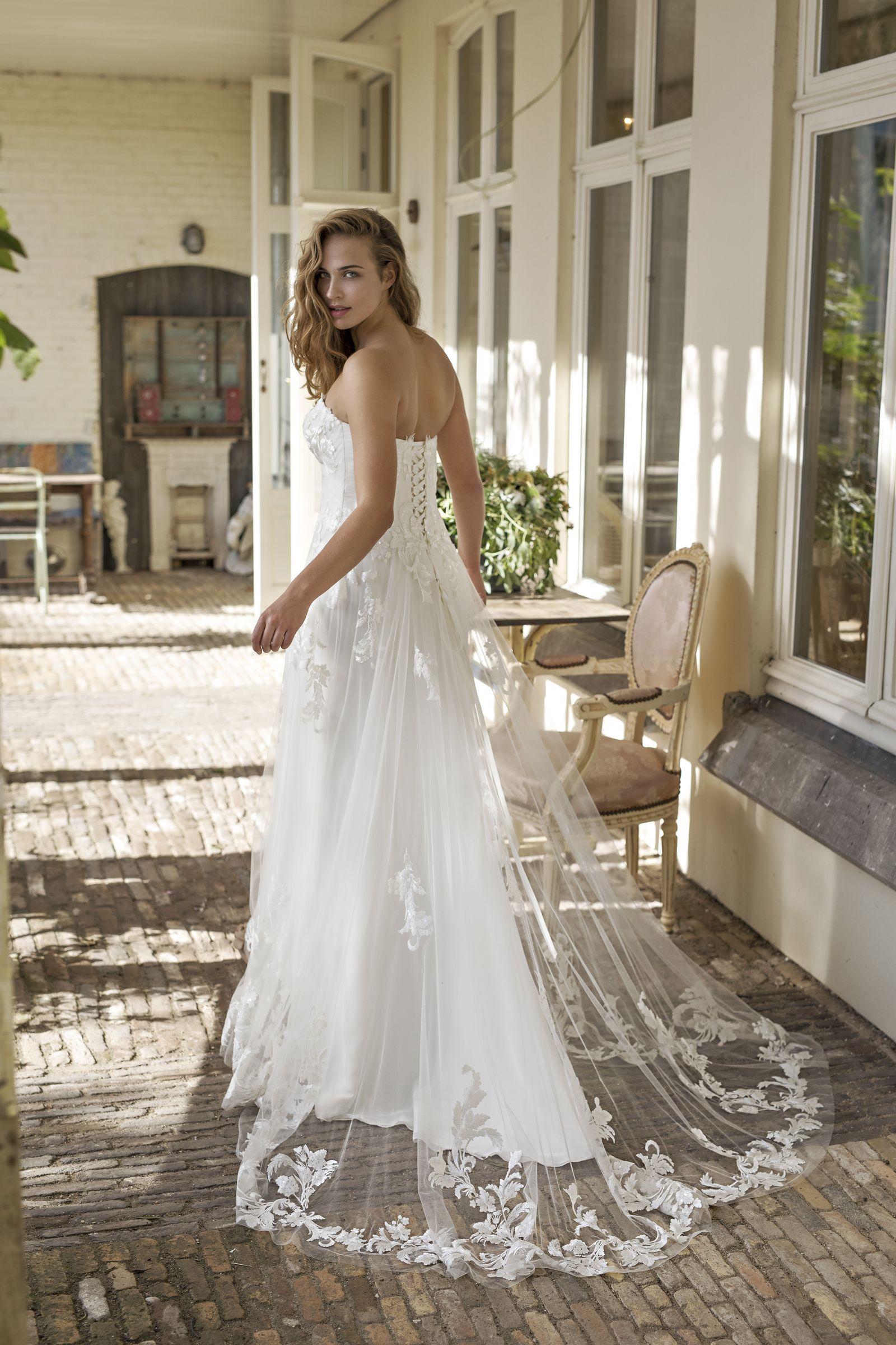 Modeca Curves 2019 Preview Delmar Back Size 5x Dresses Gorgeous Wedding Dress Bridal Gowns [ 2400 x 1600 Pixel ]