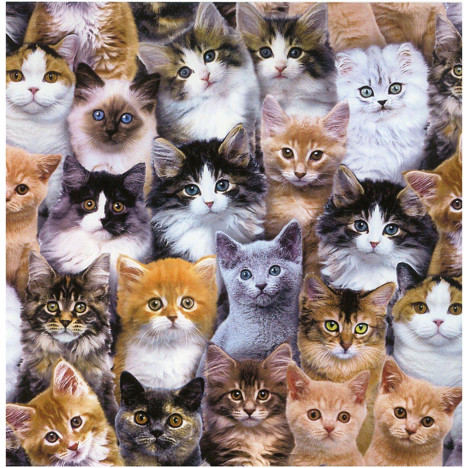 Cotton Quilting Sewing Fabric Elizabeths Studio Adorable Pets CATS CATS CATS