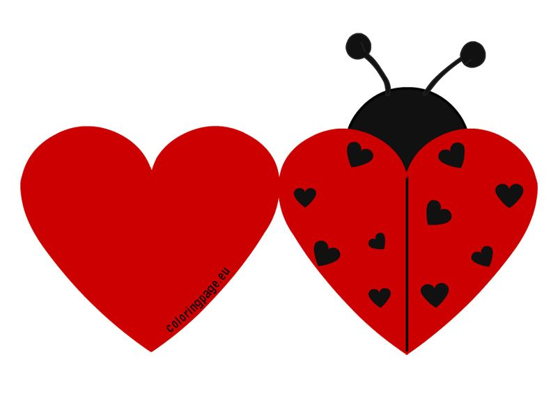 Printable Ladybug Valentine cards Valentines Day – Valentines Card Template