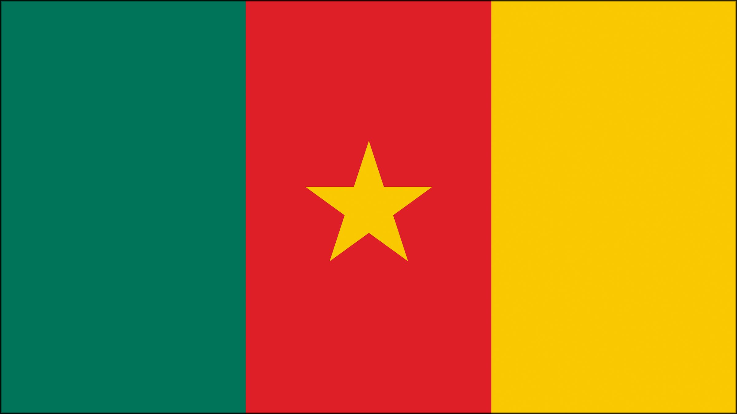 Bandera de Camern  Banderas y escudos  Pinterest  School