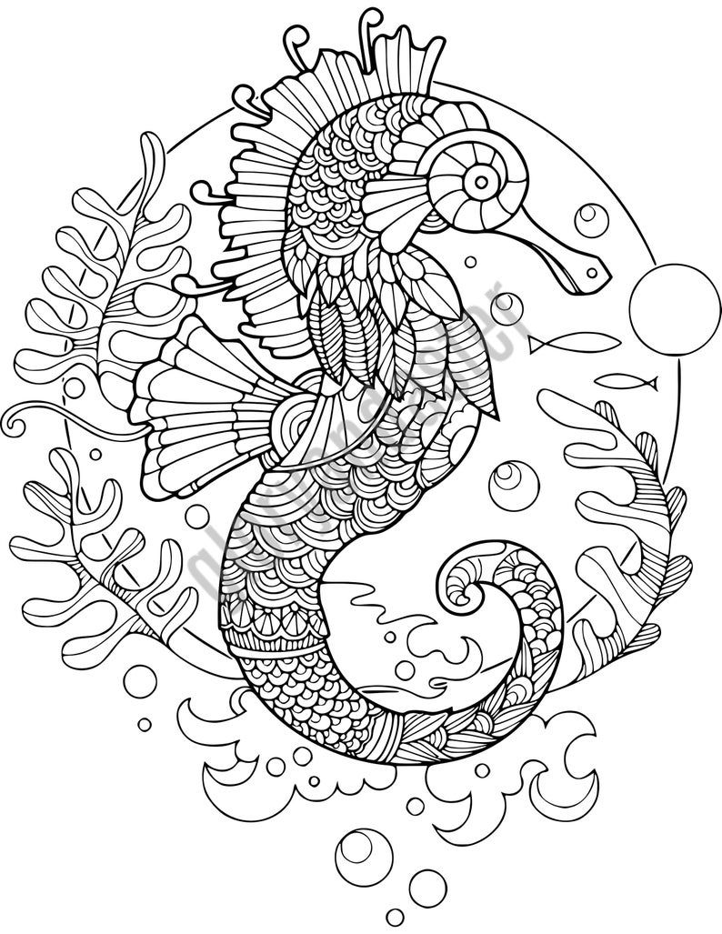 Sea Horse Coloring Page Unique Cute Seahorse Drawing At Getdrawings Butterfly Coloring Page Horse Coloring Pages Horse Coloring