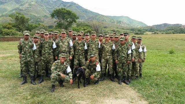 En Huila, Colombia, un perro de 4 años fue rescatado al borde de la muerte por soldados Colombianos en las calles del municipio de La Plata.