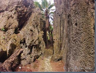 s/v Bella Star: We love Niue!