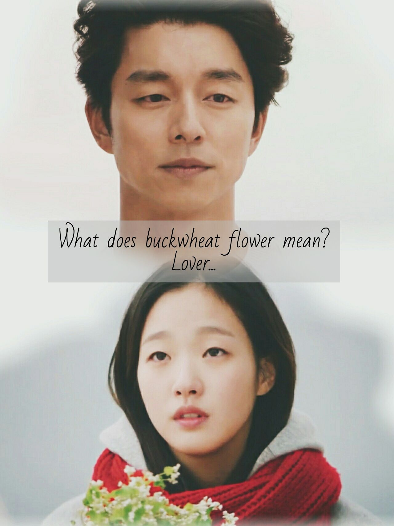 Actress Kim Go Eun and actor Gong Yoo from Kdrama Goblin The Lonely