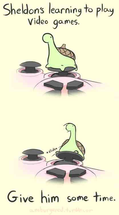 Some of my favourite Sheldon the tiny dinosaur who thinks he's a turtle pictures, enjoy! #dinosaurpics