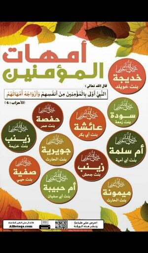 امهات المؤمنين رضي الله عنهن Islam Beliefs Islam Facts Islam Hadith
