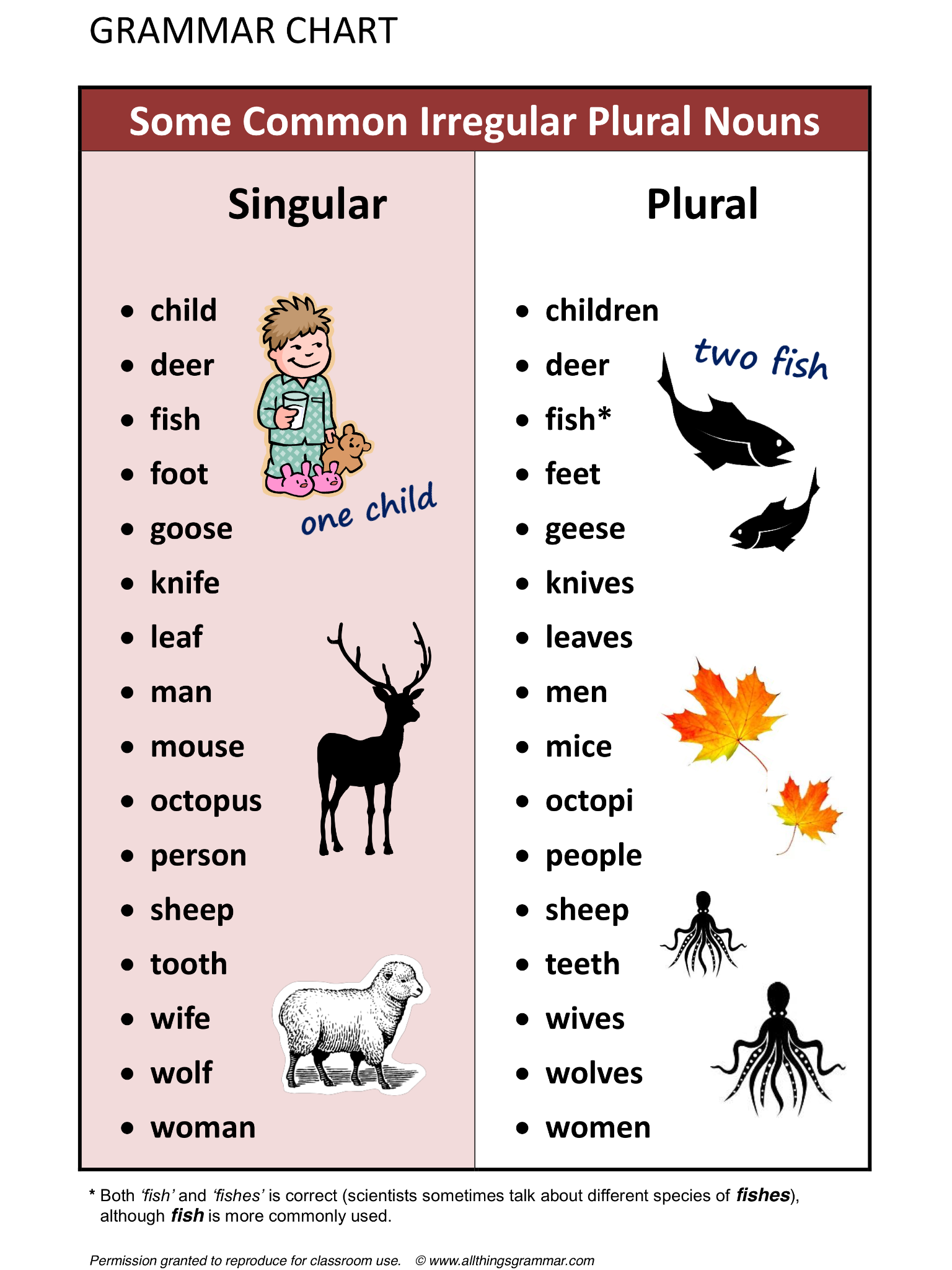 English Grammar Some Common Irregular Plural Nouns www ...