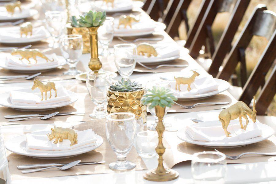 Zion National Park Wedding   Park weddings, Field wedding