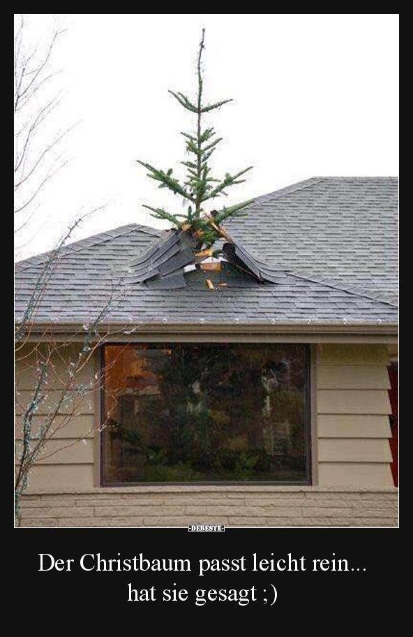 Der Christbaum passt leicht rein hat sie gesagt   Lustige Bilder Sprüche Witze echt lustig memes