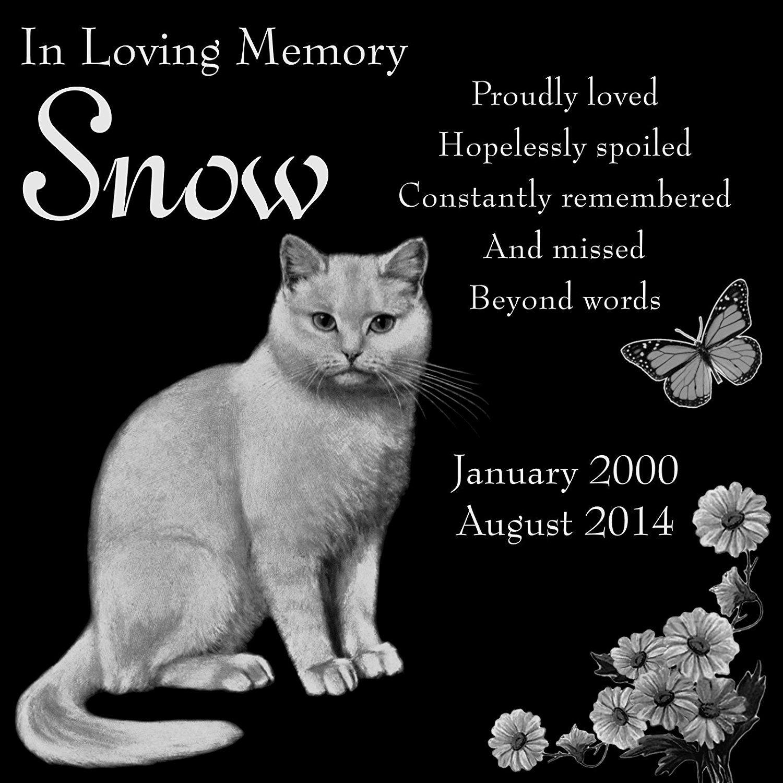 Personalized White Cat Pet Memorial 12'x12' Custom