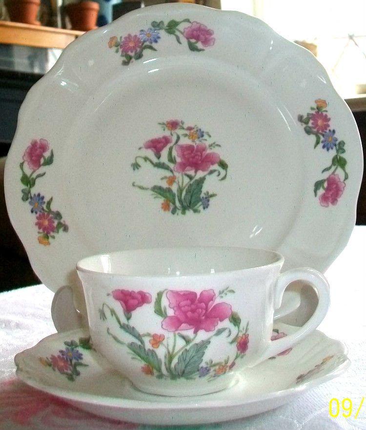 Royal Worcester~Palissy~Peony Rose~Bone China~Tea Set Trio Cup Saucer & Royal Worcester~Palissy~Peony Rose~Bone China~Tea Set Trio Cup ...