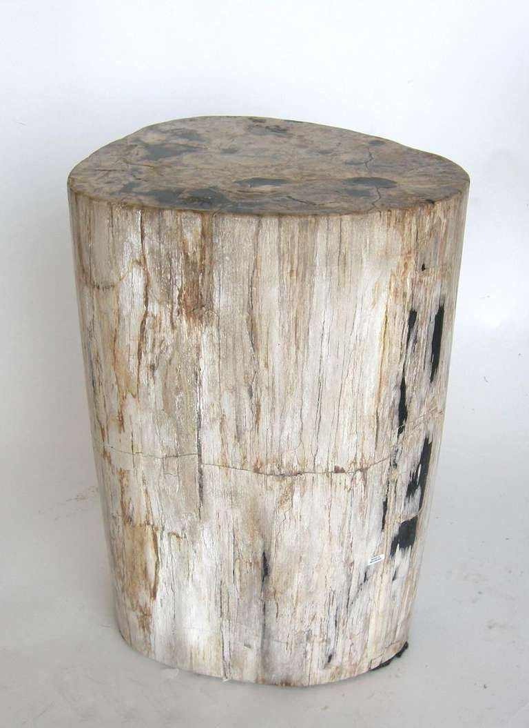 #48 83 Large Oval Shaped Petrified Wood, Stone Side Table/stool 18.5x16x20H  | Seating | Pinterest | Wood Stone, Stools And Woods