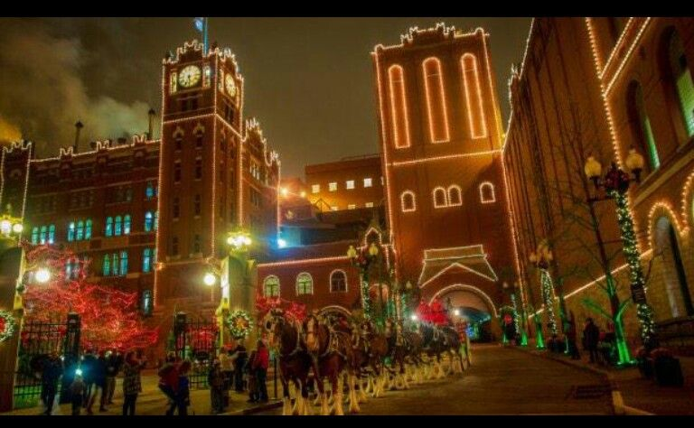 Christmas Light Displays In St Louis.Brewery Lights And Clydesdales At Christmastime Stl In
