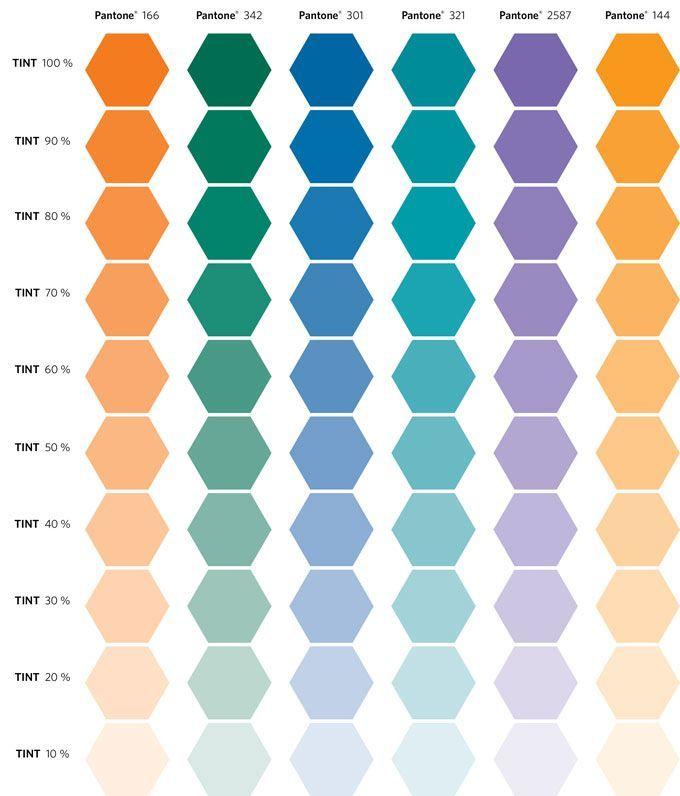Image result for MEDICAL COLORS | Orange color palettes ...