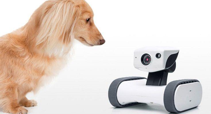 外出先から子どもやペットの様子を見たりビデオ会話 遠隔操作可能な移動式カメラ アボットライリー をサンワサプライが発売 ロボスタ ロボット情報 Webマガジン サンワサプライ ロボット ペット