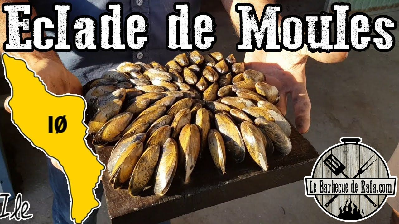 Pin By Dressler On Moules Et Palourdes In 2020 Food Sausage Meat