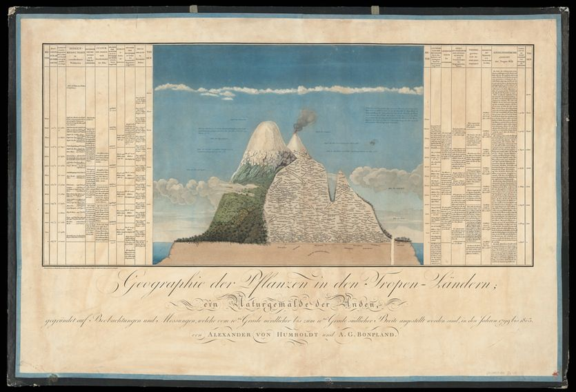 The diagram of the Andean volcano, known as the Chimborazo Map, is the best-known of Humboldt's Naturgemälde, providing detailed information about the plants he found there.