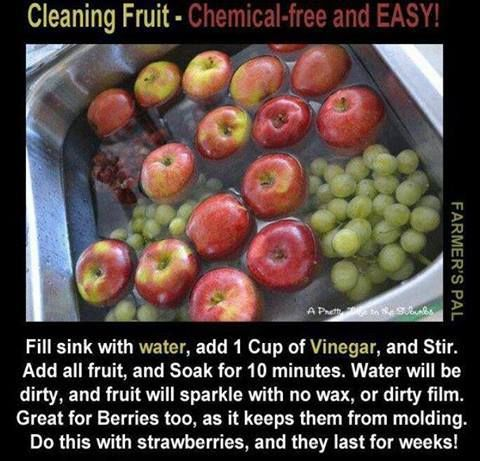 EASY WAY TO CLEAN FRUIT!   THE PICTURE SAYS IT ALL!