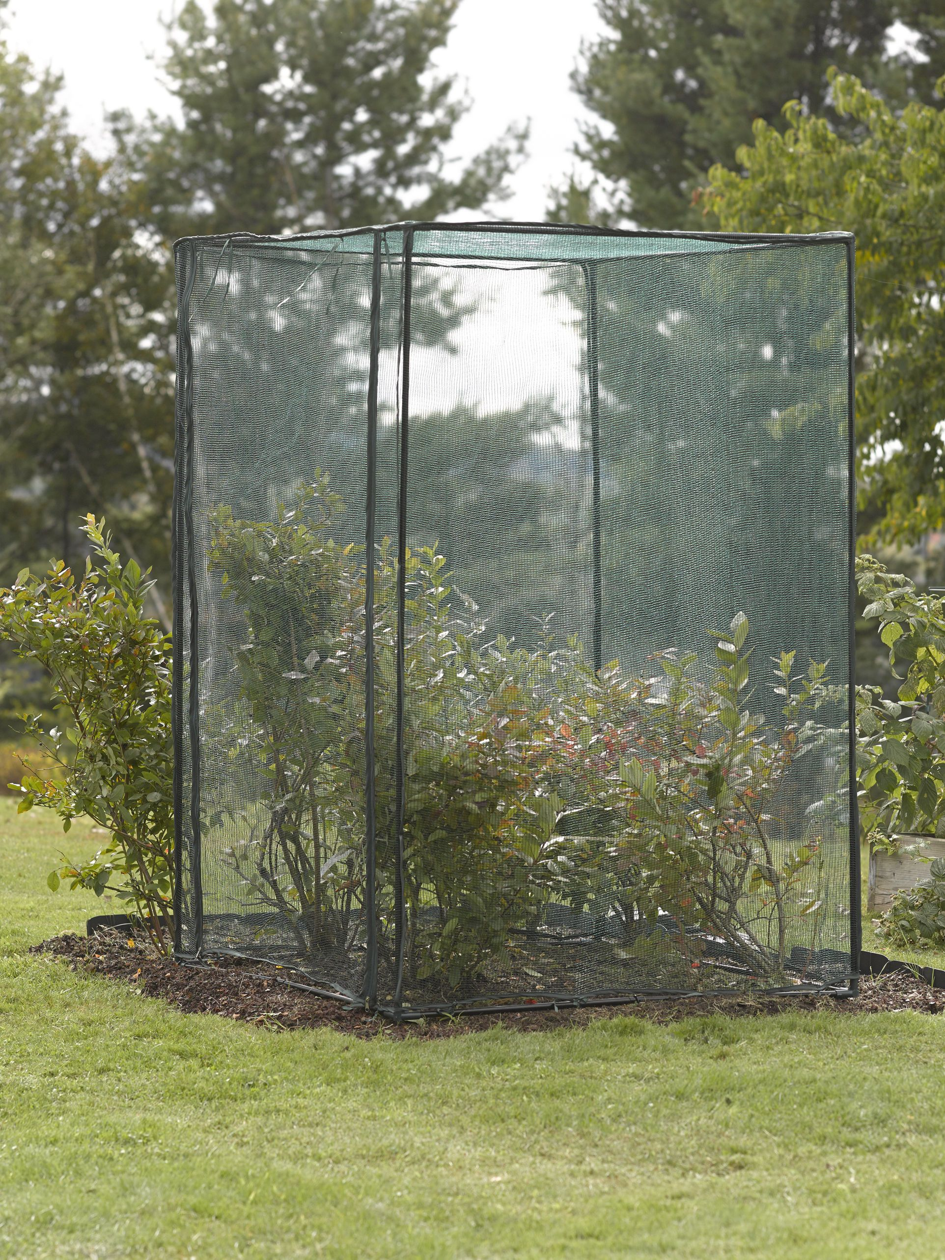 Crop Cage 4 Ft X 4 Ft X 6 Ft Tall Gardener S Supply