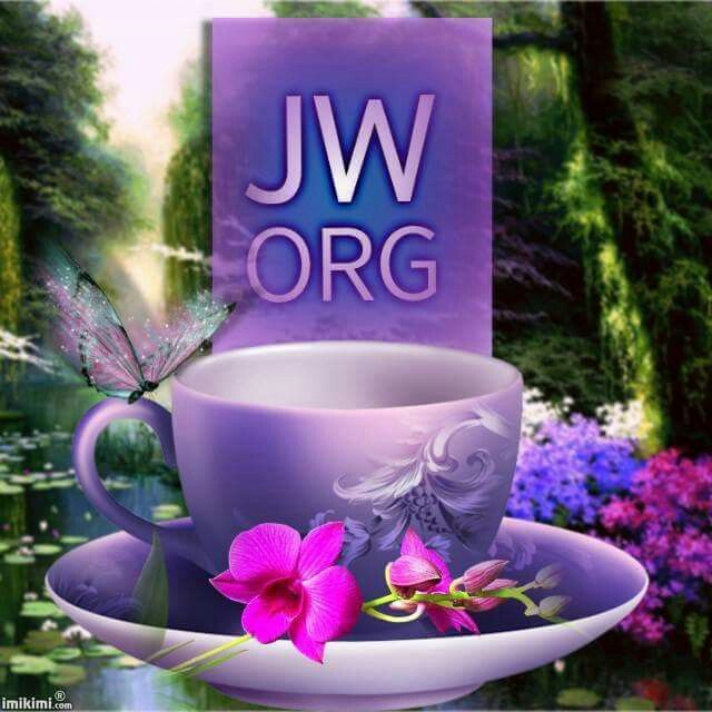 JW org has the Bible in 700+ languages    as for me & my