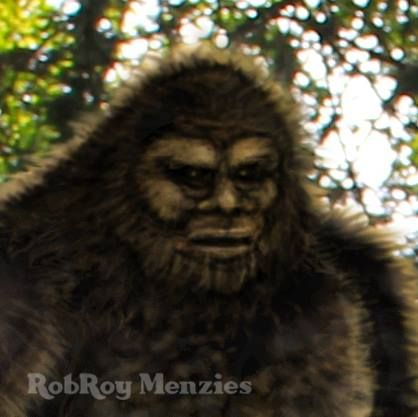 What does a Sasquatch face look like? Witnesses have reported everything from a human face, to a gorilla, to a mixture of both. Today's report comes from an eyewitness who has a very different take on what he saw. Visit our store for more of RobRoy Menzies incredible Bigfoot art on a huge collection of great merchandise!  http://bigfootevidence.blogspot.com/2013/01/heres-unique-description-of-what.html  http://www.cafepress.com/cryptoaddicts2