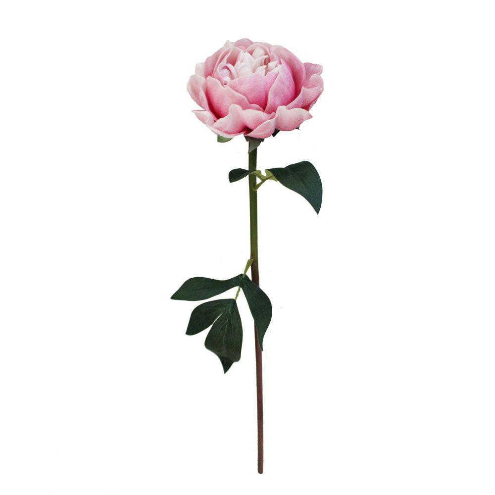 Real Touch Peony Stem In Pink With Cream Accents 20in Tall