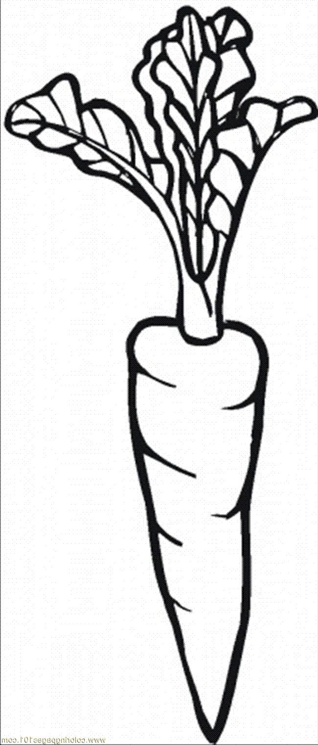 I Love Carrot Coloring Pages