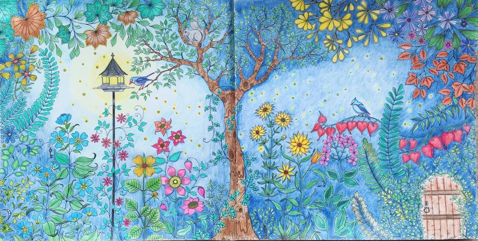Secret Garden An Inky Treasure Hunt And Coloring Book Johanna Basford 9781780671062 Amazon
