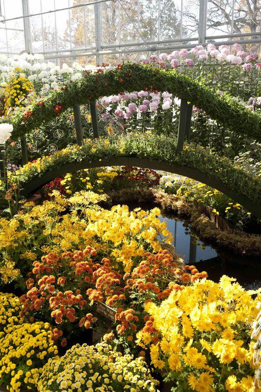 9a94d78653d386d5fd83f888b7a1950a - What's Happening At The Botanical Gardens