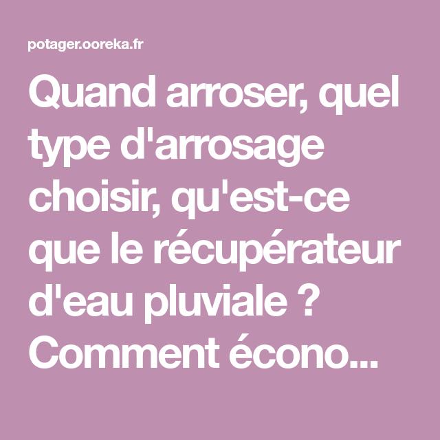 Arrosage Du Potager Comment Arroser Son Potager Arrosage