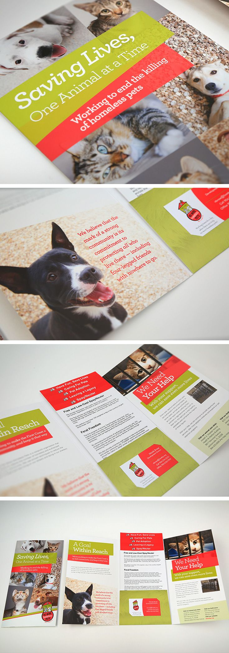 Brochure Design For First Coast No More Homeless Pets Design By
