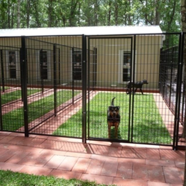 How to build dog suites a modern boarding kennel for Indoor outdoor dog kennel design