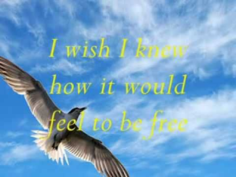 LIGHTHOUSE FAMILY - I WISH I KNEW HOW IT FEELS TO BE FREE - (VIDEO & LY...