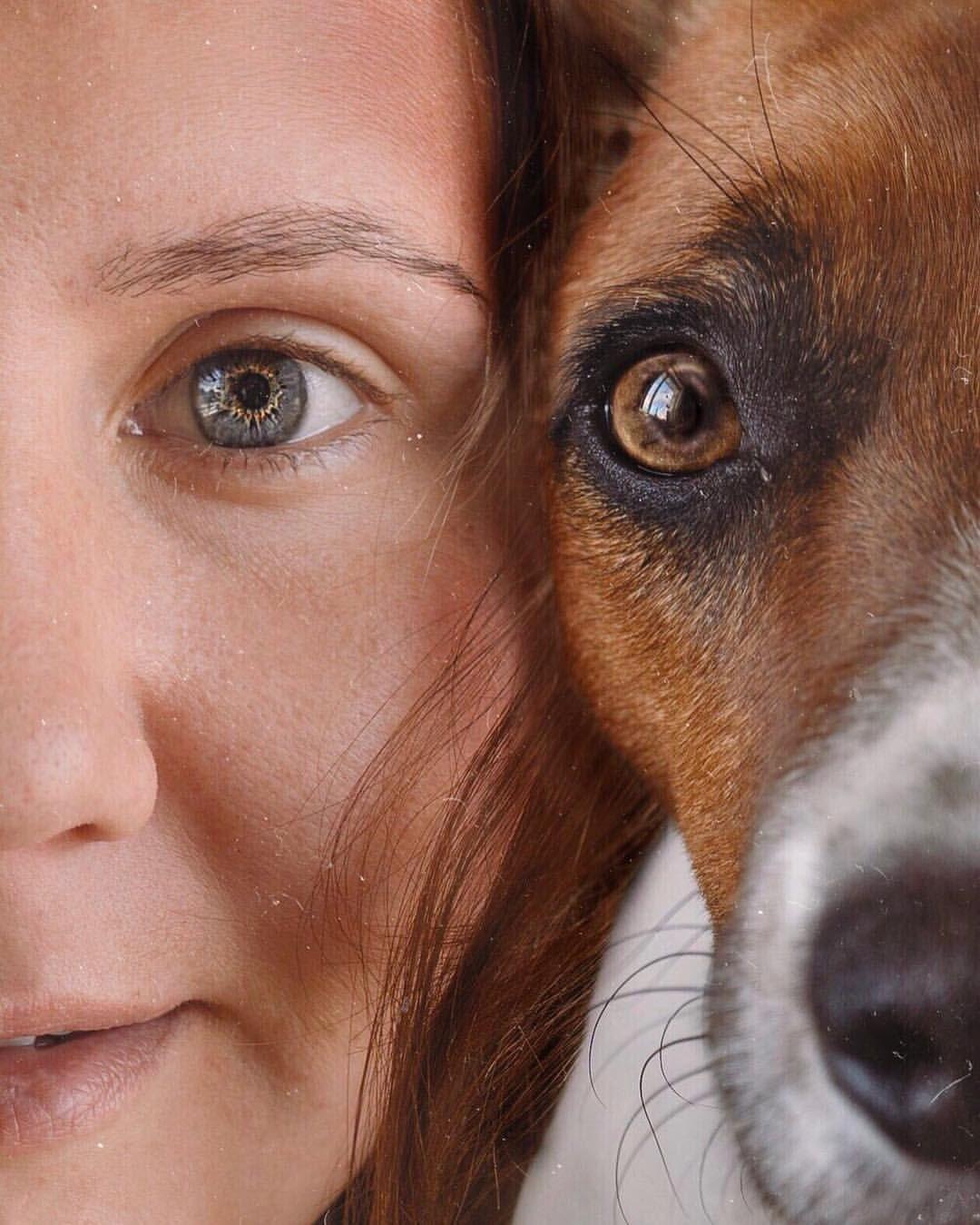 Моя собака джек рассел терьер друзья собачник глаза селфи ...