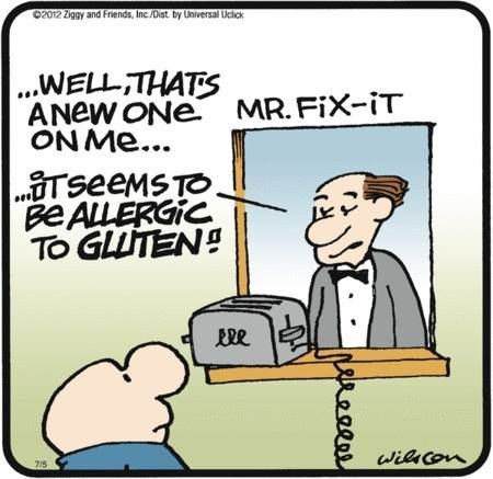 Awww, you gotta love ziggy.  If I had a toaster, it would be allergic to gluten, too!  :)