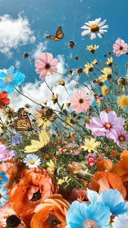 butterfly aesthetic retro wallpaper in 2020   Flower phone ...