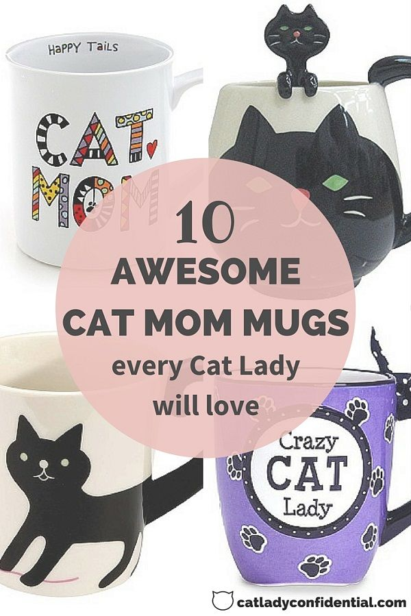 58a2e56a4 18 Kick-Ass Products That Will Help You Embrace Your Inner Cat Lady ...