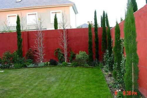 arbustos-para-exteriores Zukünftige Projekte Pinterest Patios