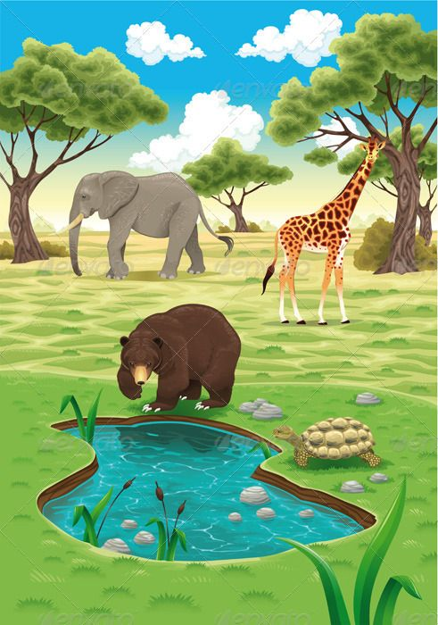 Animals In The Nature Jungle Illustration Animal Drawings Nature Vector
