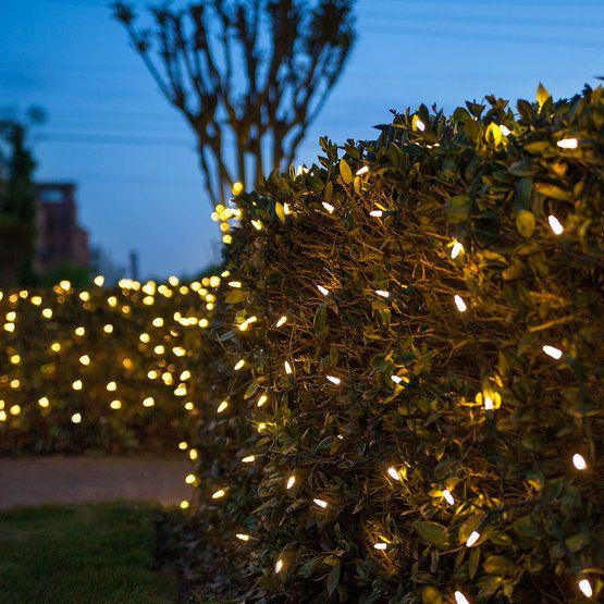 4 X 6 M5 Led Net Lights Warm White Green Wire Yard Envy Outdoor Christmas Lights Net Lights Christmas Lights