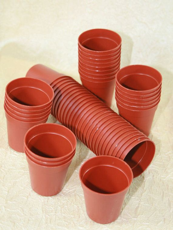 200 Miniature Plastic Plant Pots 45mm 1 And 3 4 By Eclecticasia Small Potted Plants Plastic Plant Pots Plastic Pots