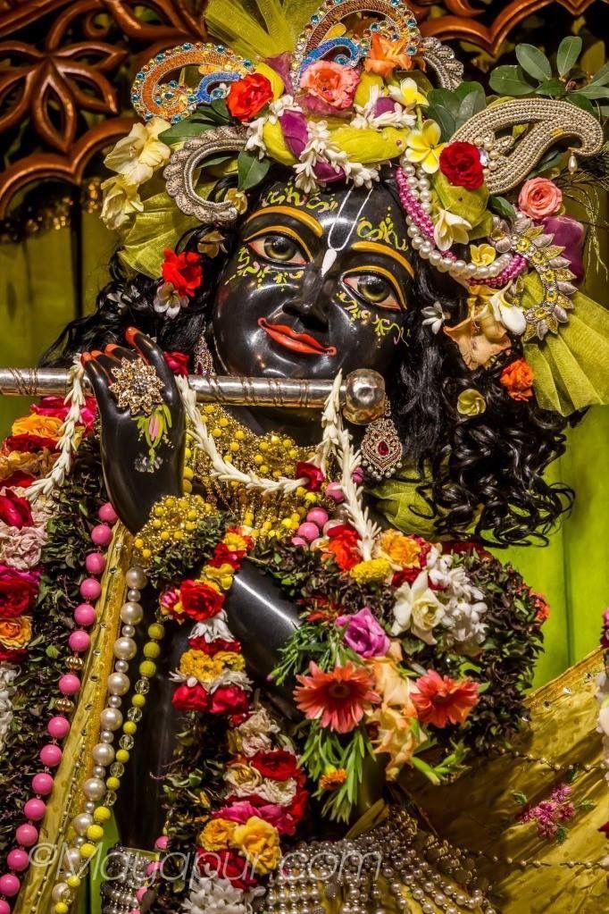 ISKCON Mayapur | Bhakti in 2019 | Lord krishna, Krishna, Hare krishna