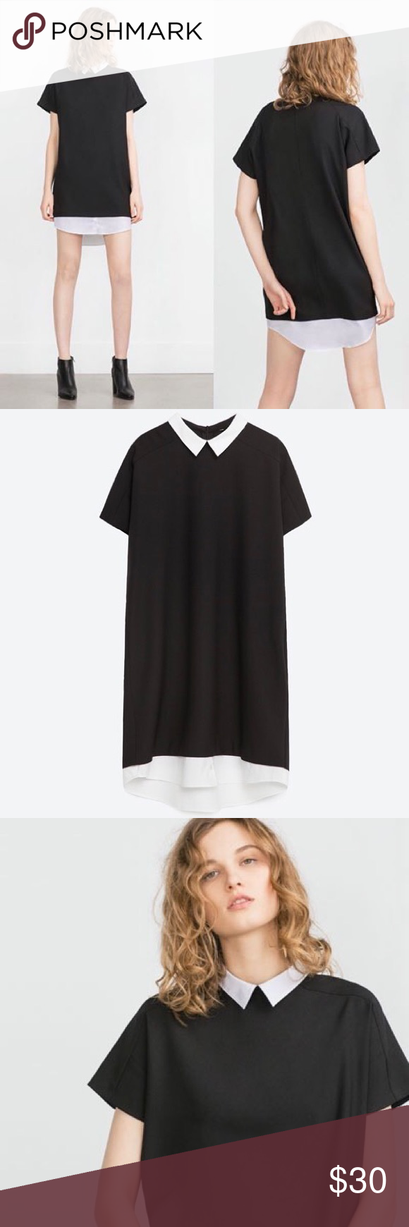 cd968fbf Zara Black Dress With White Shirt Sleeves – Little Black Dress ...