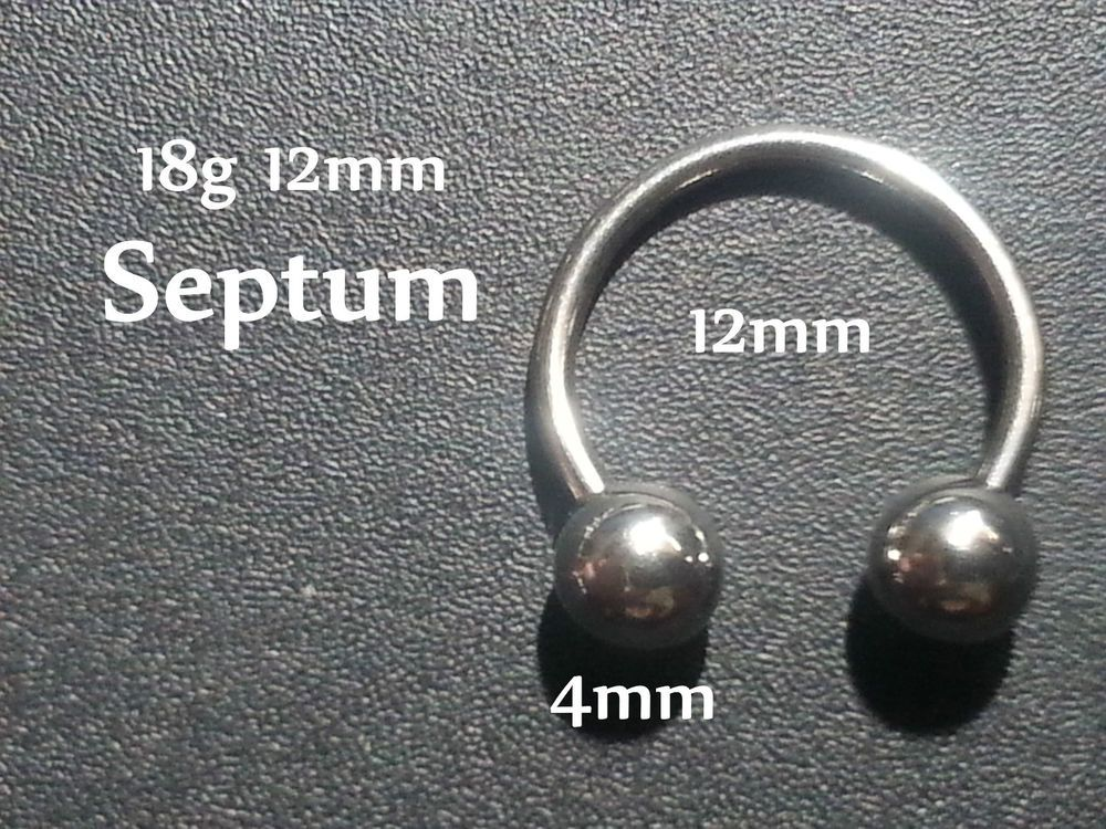 Details About Septum Piercing 12mm Horseshoe Bar Lip Nose Ear Ring 316l Steel 16g 4mm Ball Horseshoe Bar Septum Ear