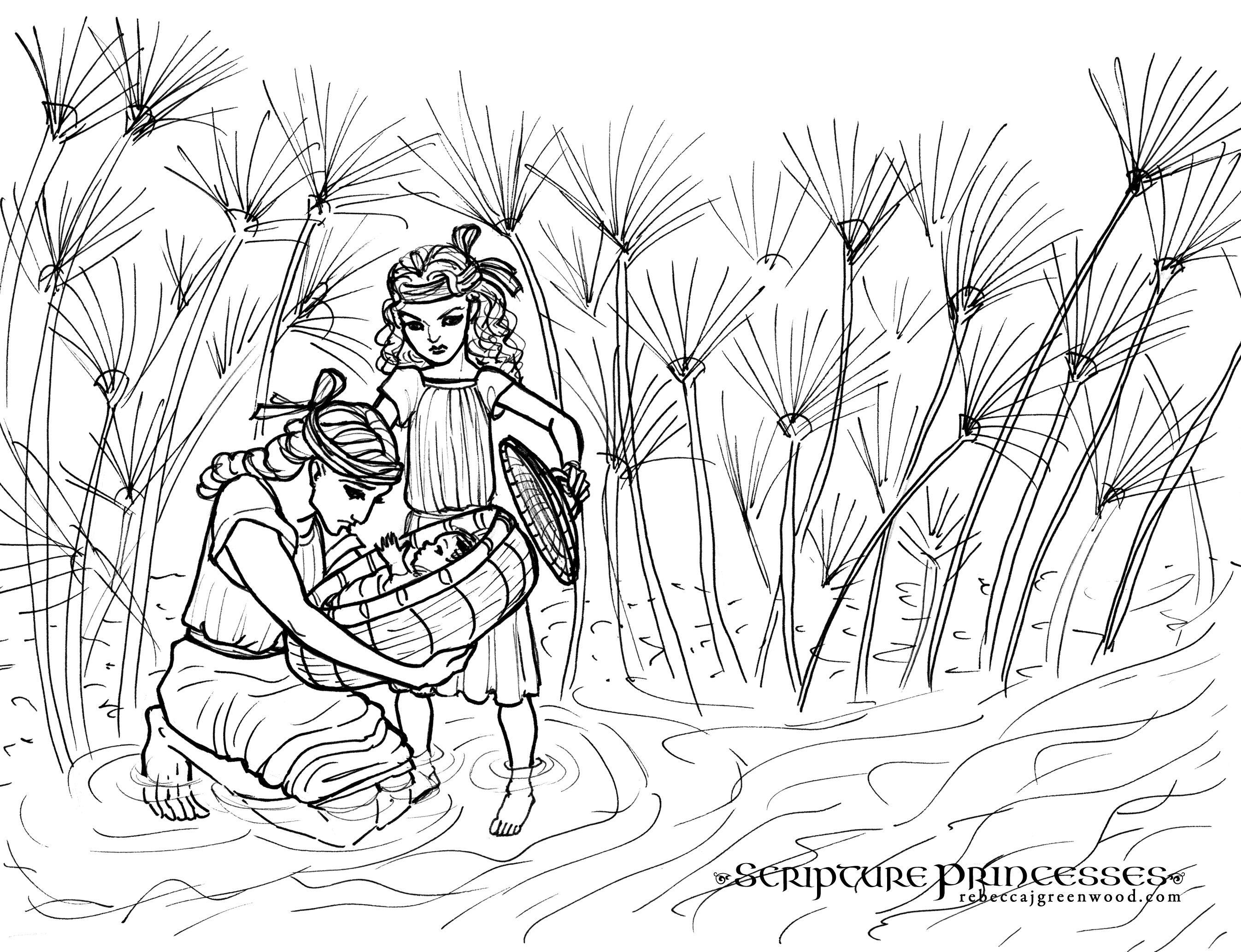 miriam and baby moses coloring page - Penelusuran Google | Sunday ...