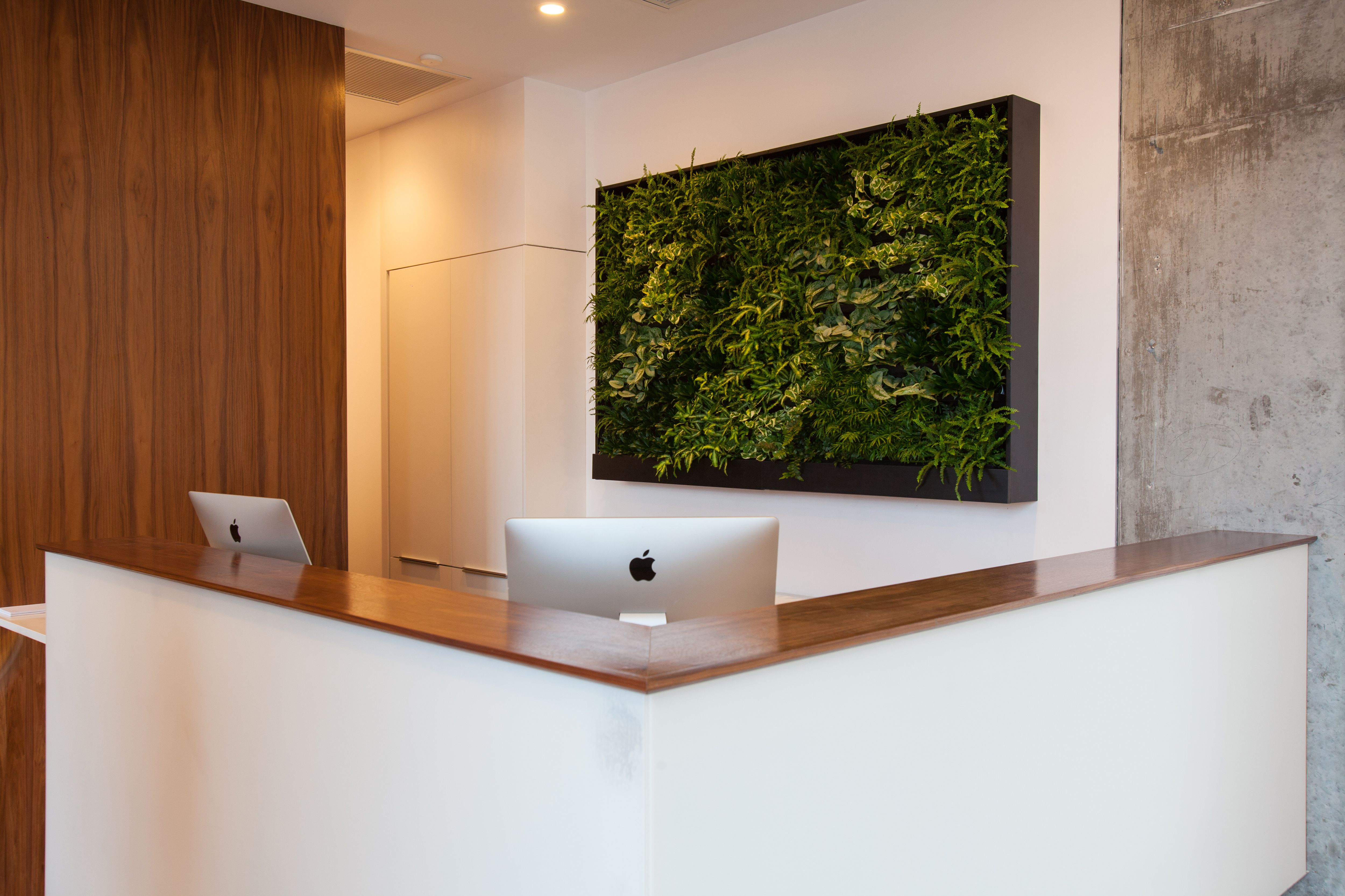 Front desk with living wall feature at West Ave River Oaks spa.