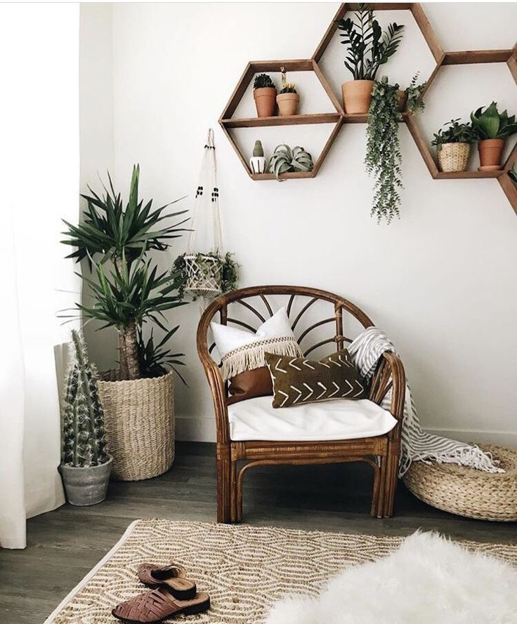 Photo of Shelves Boho White walls Plants Scandinavian lots of light cacti ? wood chair… – Modern