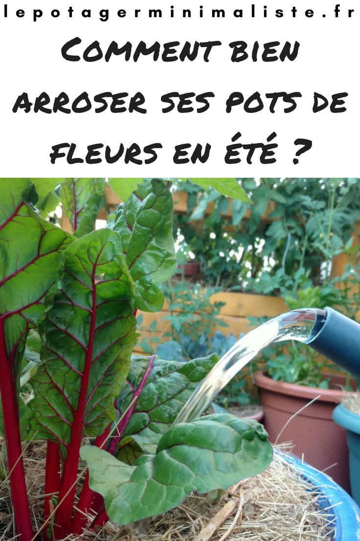 Arrosage Pour Plantes En Pot comment bien arroser ses pots de fleurs l'été ? | pot plante